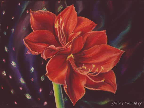 Gypsy Flowers: a Pastel painting by Shere Chamness